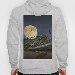 Moon and Wooden Shipwreck with Gulls Hoody
