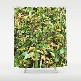 grenn leaves plants Shower Curtain