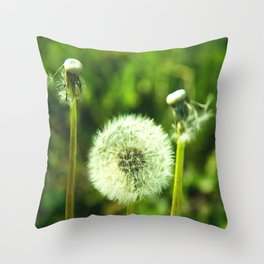 Blow me Throw Pillow