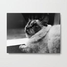 leave me alone:) Metal Print