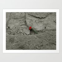 Lost Flower Art Print