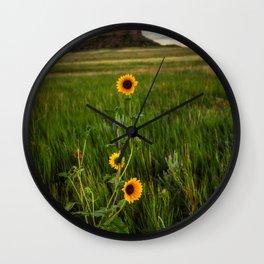 Sunflowers on the Western Prairie - Flowers and Landscape Near Scottsbluff Nebraska Wall Clock