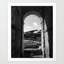 A View from the Colosseum Art Print