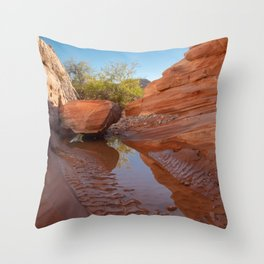 After the Rain - III, Valley_of_Fire Canyon, NV Throw Pillow