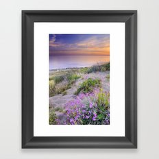 Sunset at the beach. Flowers on the sand. Framed Art Print