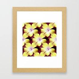 Summery Yellow.... Framed Art Print