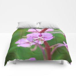 Fireweed Wildflower Comforters