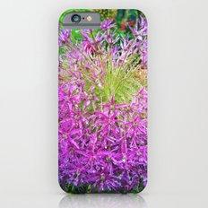 Dewey Allium Slim Case iPhone 6s