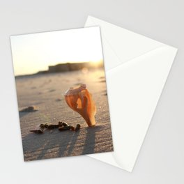 Floating Shell Stationery Cards