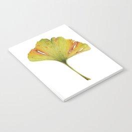 Gingko Leaf Notebook
