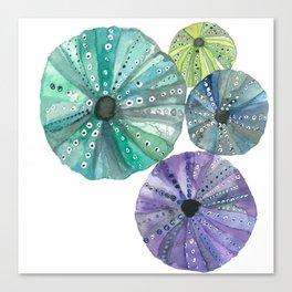 Hawaiian Sea No. 2 Sea Urchins Throw Pillow Canvas Print