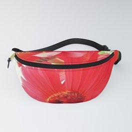Red Gerbera Daisies WC Fanny Pack