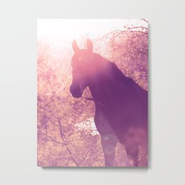 horse collection. Trakehner. sunset Metal Print