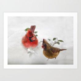 Mr. and Mrs. Cardinal Art Print