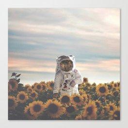 The Sunflower Galaxy, Messier 63 Canvas Print