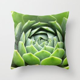 Sempervivum Grüne Rose Throw Pillow