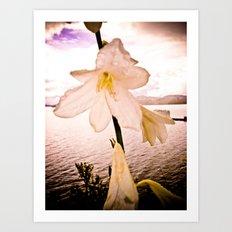 FLOWER IN THE IMMENSITY Art Print