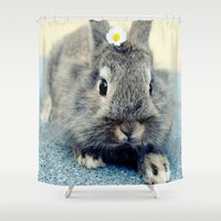 bunny Shower Curtains featuring Bunny by Falko Follert Art-FF77