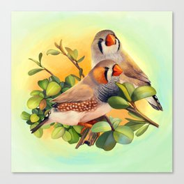 Zebra finches realistic painting Canvas Print