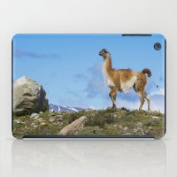 chile iPad Cases featuring A Guanoco, in Patagonia, Chile. by davehare