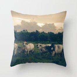 Cow Family Throw Pillow