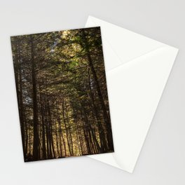 From the Golden Light Stationery Cards