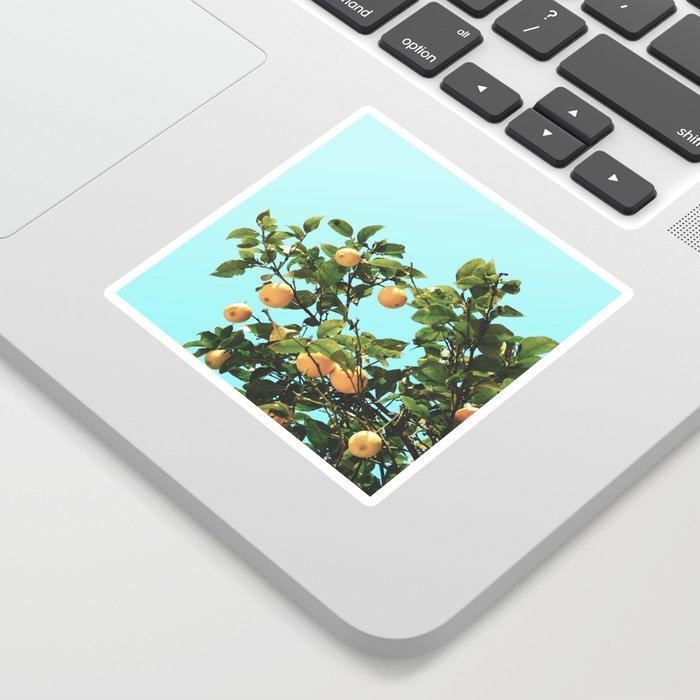 Summer Orange Tree Sticker