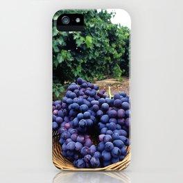 Grape Vineyard iPhone Case