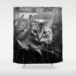 CuCù gattone Shower Curtain