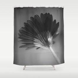 Gerbera III Shower Curtain