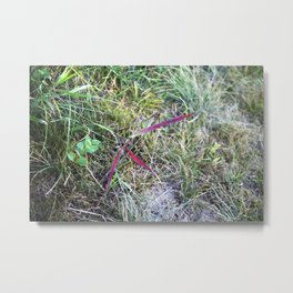 Spark of Colour in the Green Metal Print