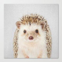 Hedgehog - Colorful Canvas Print