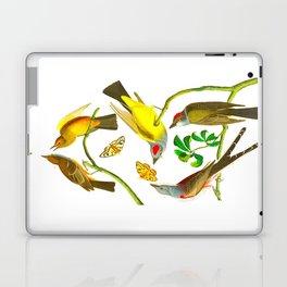 Vintage Scientific Bird Butterfly & Floral Illustration Laptop & iPad Skin