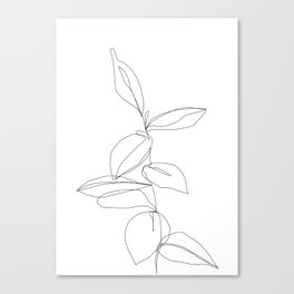 One line minimal plant leaves drawing - Berry Canvas Print