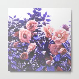 Wild Roses - Ultra Violet and Coral #decor #floral #buyart Metal Print