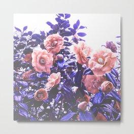 Wild Roses - Ultra Violet and Coral #decor #floral #buyart Metal Print