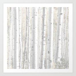 Pale Birch Trees Art Print