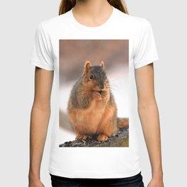 Foxilla T-shirt