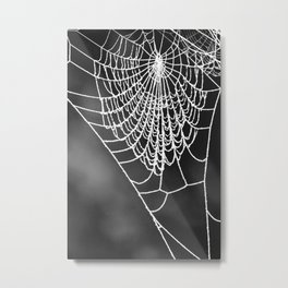 FROZEN WEB Metal Print
