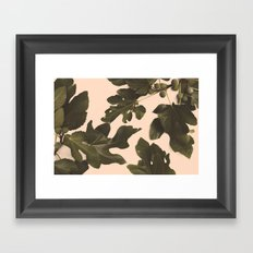Botanical II - Day Framed Art Print