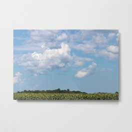 Field of Sunflowers Horizontal Metal Print
