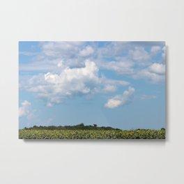 Field of Sunflowers Horizontal Metal Print