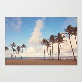 Kauai Palm Trees Canvas Print
