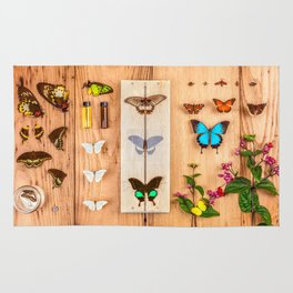 Butterfly Collector Rug