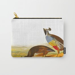 Scientific Bird Illustration Carry-All Pouch