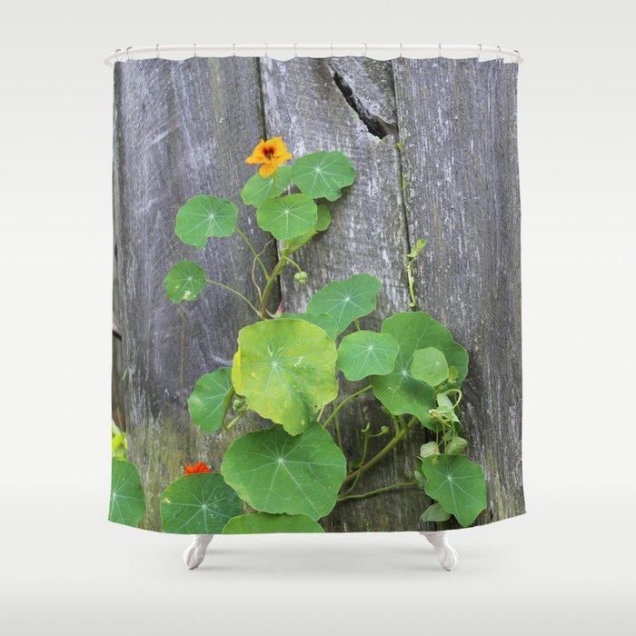 The Garden Wall Shower Curtain