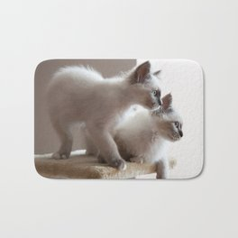 Portrait of two white long hair birman cats with blue eyes. Bath Mat