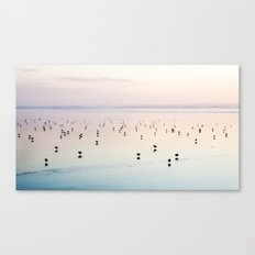 Silhouette Shore Birds Canvas Print