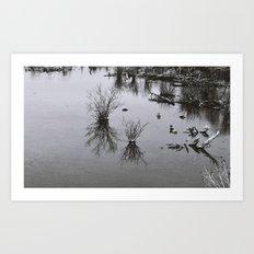 Swampy Art Print
