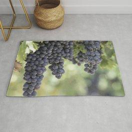 black grape grows on vineyard Rug